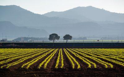 A la découverte du poivre de Timut – Expédition au Népal