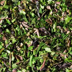 melange-aux-algues-zoom